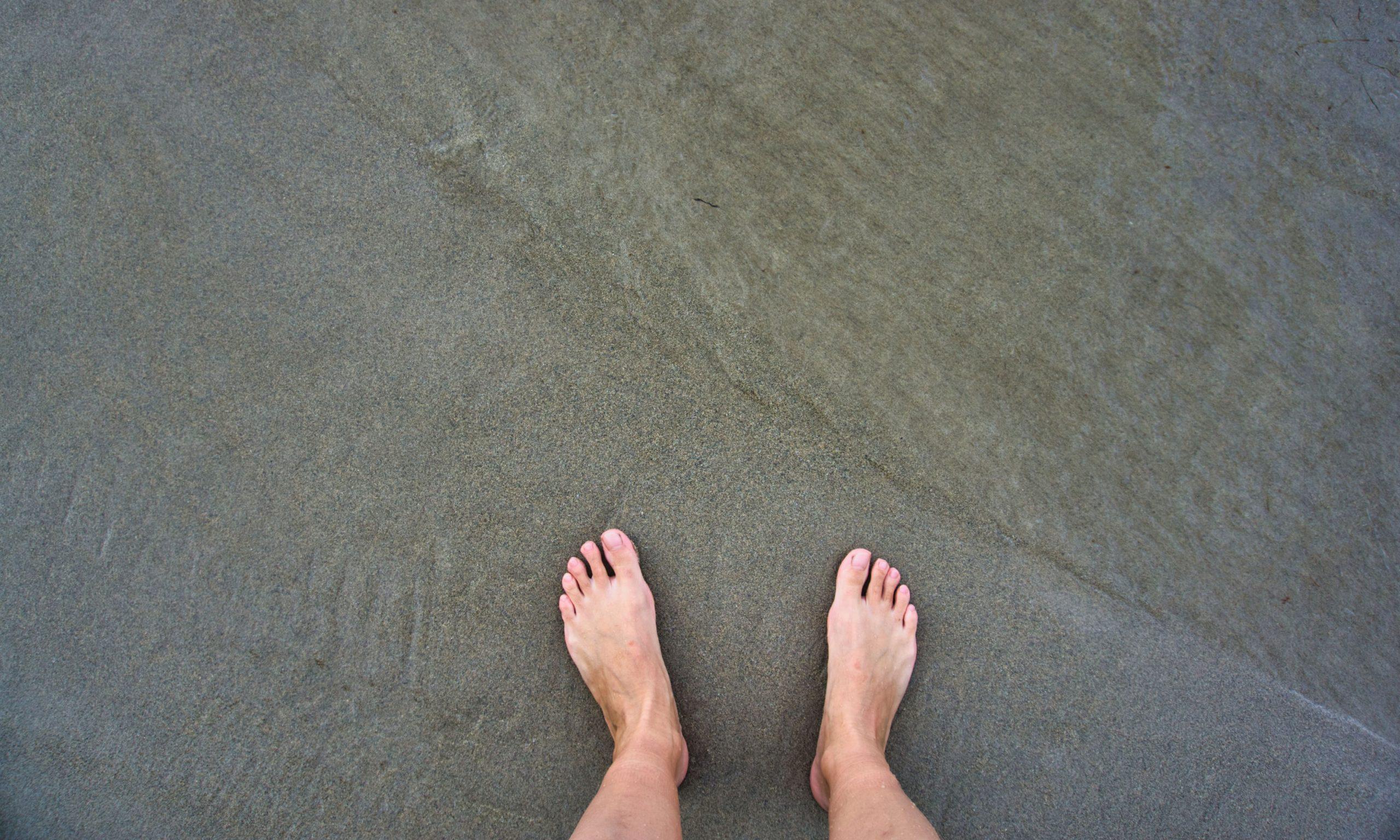 Боса в океана